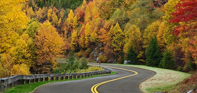 Blue-Ridge-Parkway-road-autumn-631