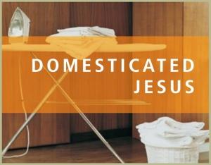 series_domesticatedjesus